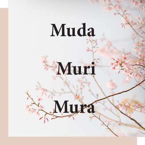 Mudi Mura Muri