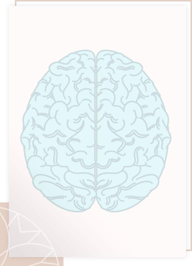 Charlotte Labee - Hersenen
